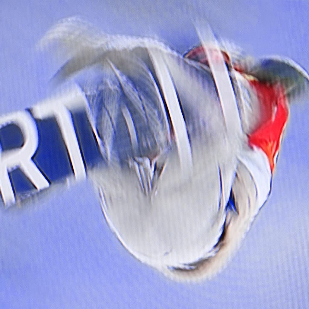 snowboarder-1151