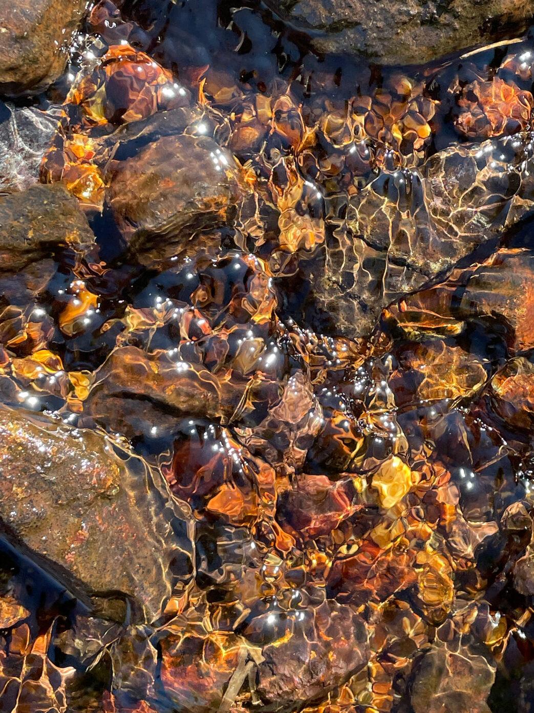 tundra stream water